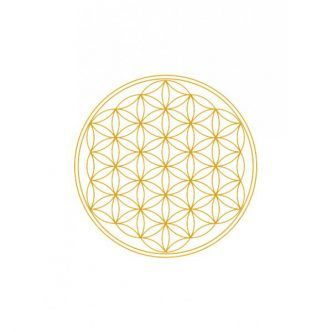 Flower of Life Motiv - Fleur de vie - Illustration