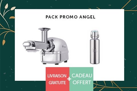 Promo-angel regenerescence